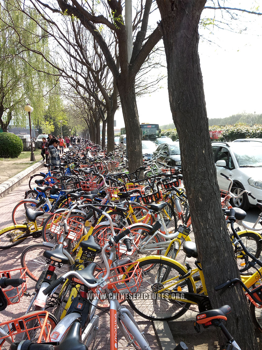China Dockless Shared Bicycles Clogged Beijing Sidewalk 2