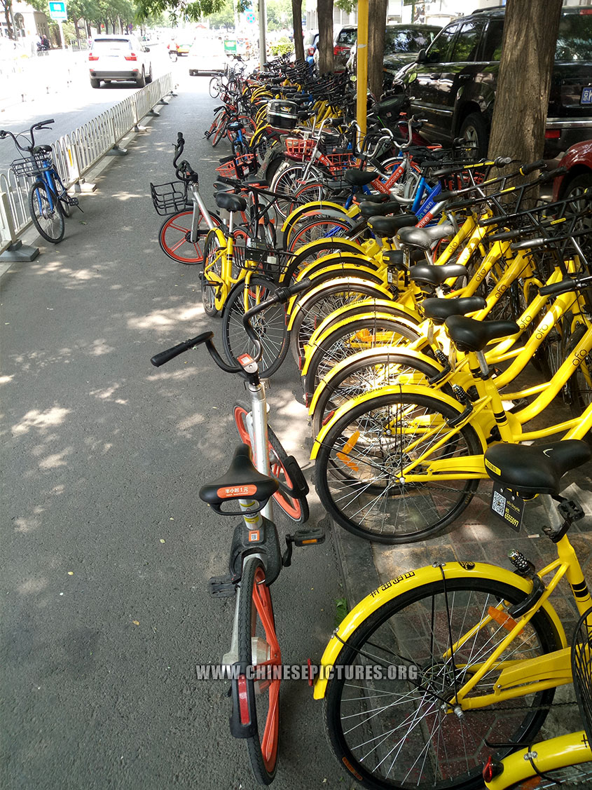China Dockless Shared Bicycles Clogged Beijing Sidewalk 3
