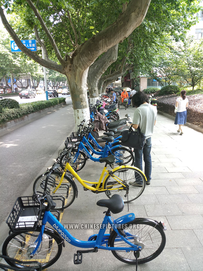 China Dockless Shared Bicycles Nanjing Sidewalk 2